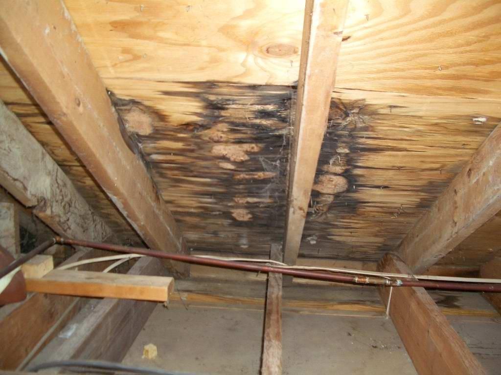 #1 West Palm Beach Roof Repair Contractors